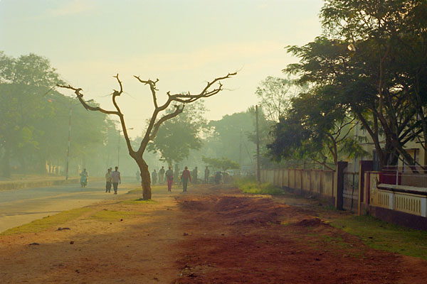 morning light, mysore